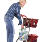 Thumbnail-Photo: Pick-up trolley and GT26 shopping basket