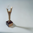 Thumbnail-Photo: Toshiba Awarded Gold Stevie for Best Overall Web Design...
