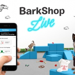Thumbnail-Photo: Introducing BarkShop Live