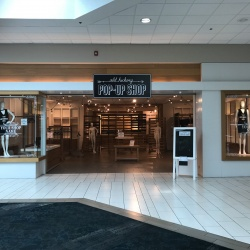Thumbnail-Photo: Old Hickory Mall launches pop up shop for local merchants...