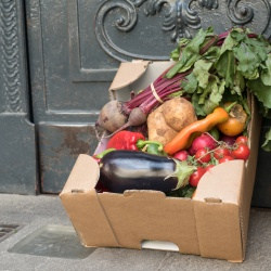 Thumbnail-Photo: Preventing food waste: It's ecological, social and saves resources...