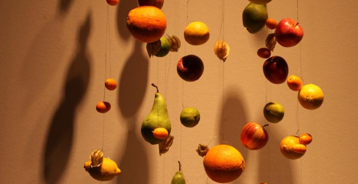 Fruits like apples hanging from the ceiling