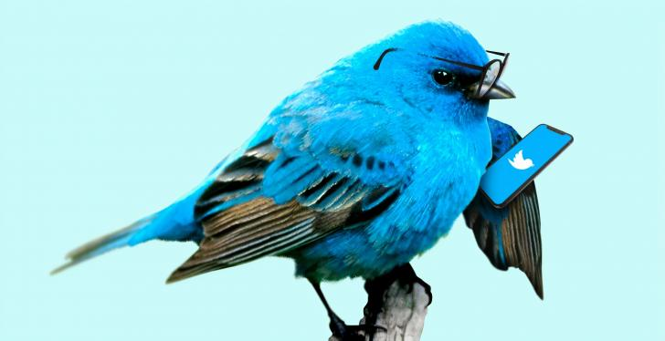 A blue bird with glasses is looking at a smartphone with the twitter social...